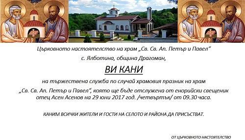 Qlbotina3
